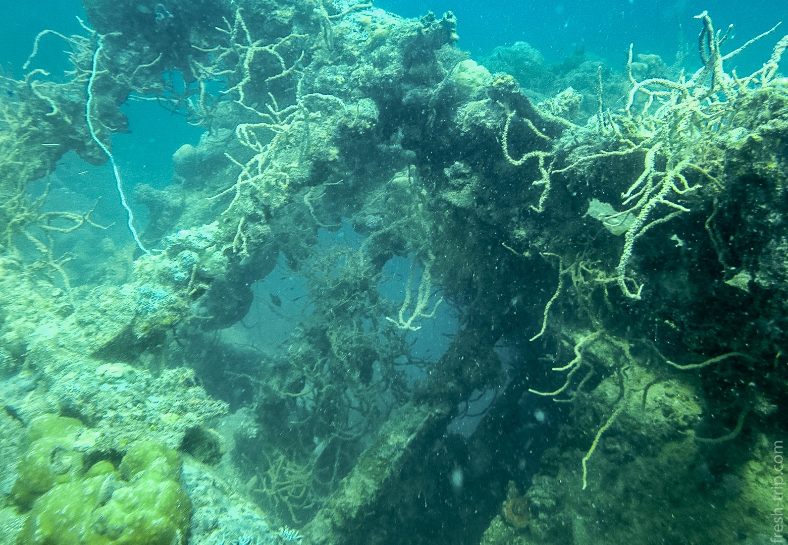Корабль Tangat Gunboat Wreck, Филиппины