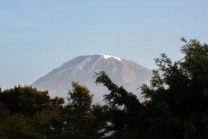 Вид на Килиманджаро с веранды