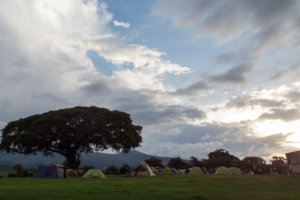 Лагерь Seronera Public Camp, Нгоронгоро
