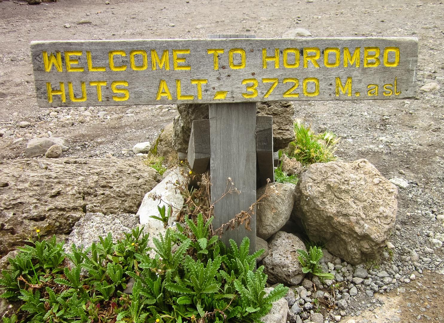 Хоромбо хатс, Килиманжаро