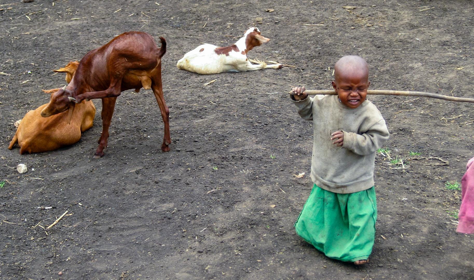 Ребёнок масай, Нгоронгоро
