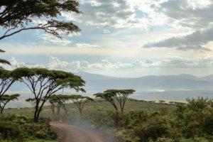 Вид Нгоронгоро