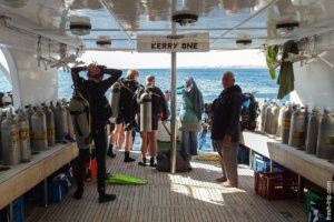 Dive boat Kerry One, Red Sea