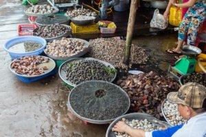 рыбный рынок, Фукуок
