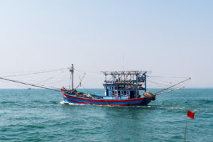 Ловцы кальмаров, Хойян