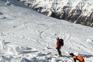 спасатель с собакой на горе Мармолада