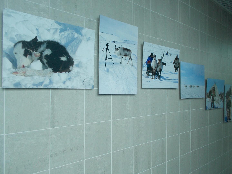 Фотографии в аэропорту Угольный