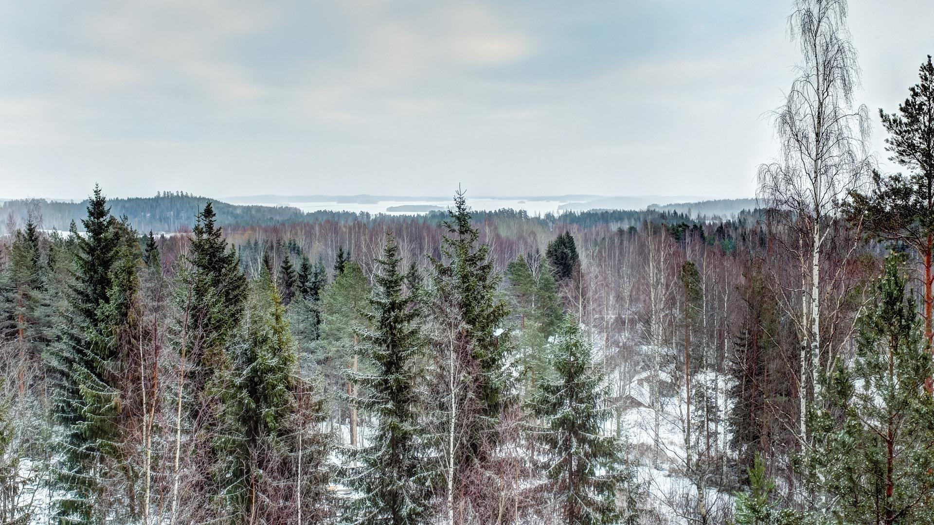 вид на озеро финское Сайма